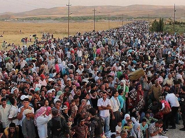 Invasione: le cifre, tra numeri fake e silenzi